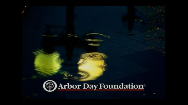 Click here to watch the Arbor day video