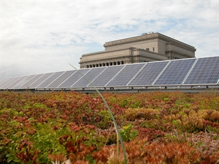 Milwaukee Central Library's green roof and solar electric array.