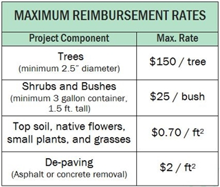 "Chart: MAXIMUM Reimbursement Rates; Project component vs Max. Rate. Trees (minimum 2.5"" diameter) max rate $150/tree, Shrubs and Bushes (minimum 3 gallon container, 1.5 ft. tall) $25/bush, Top soil native flowers small plants and grasses $0.70/ft^2, De-paving (asphalt or concrete removal) $2/ft^2"